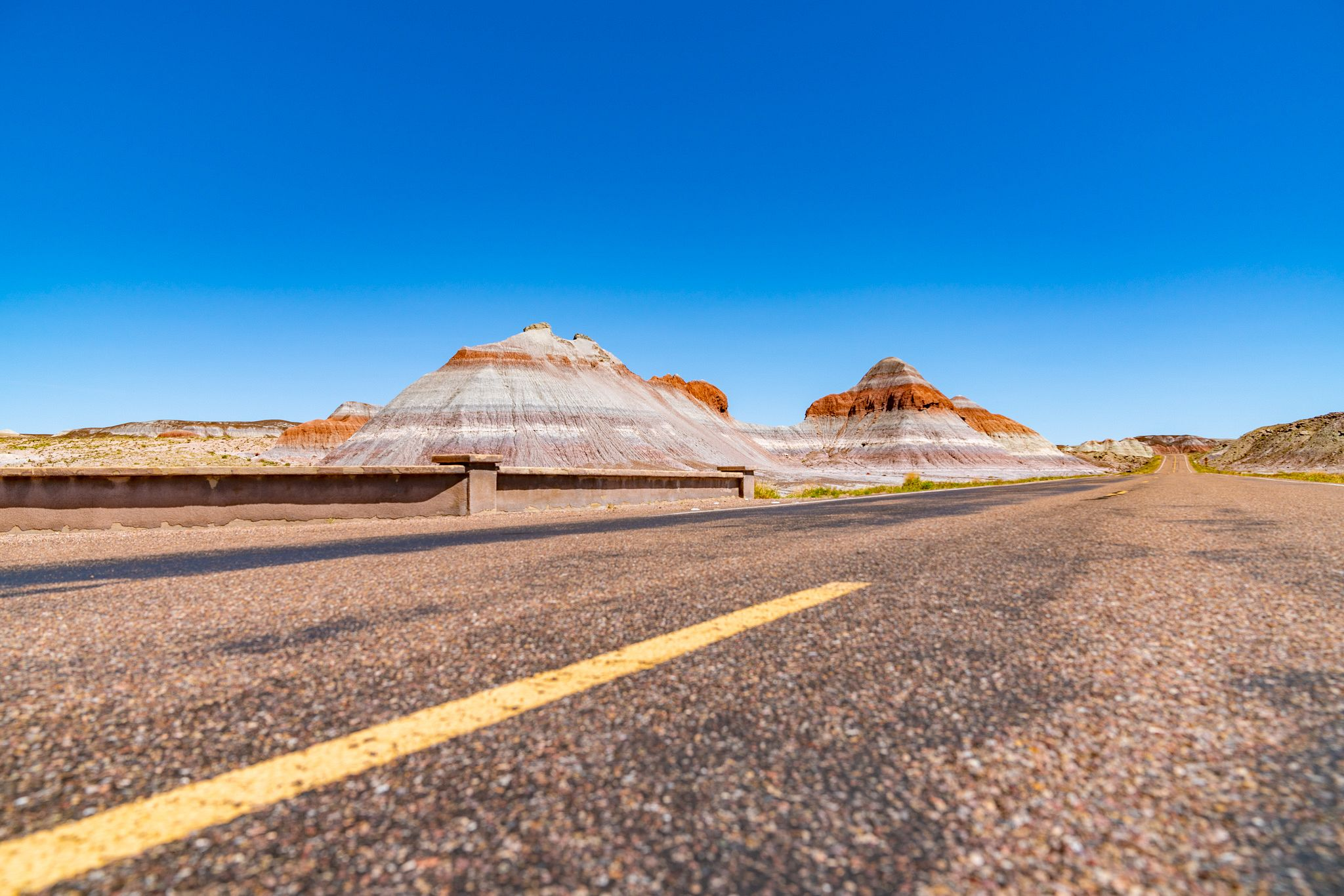 Petrified Forest Road