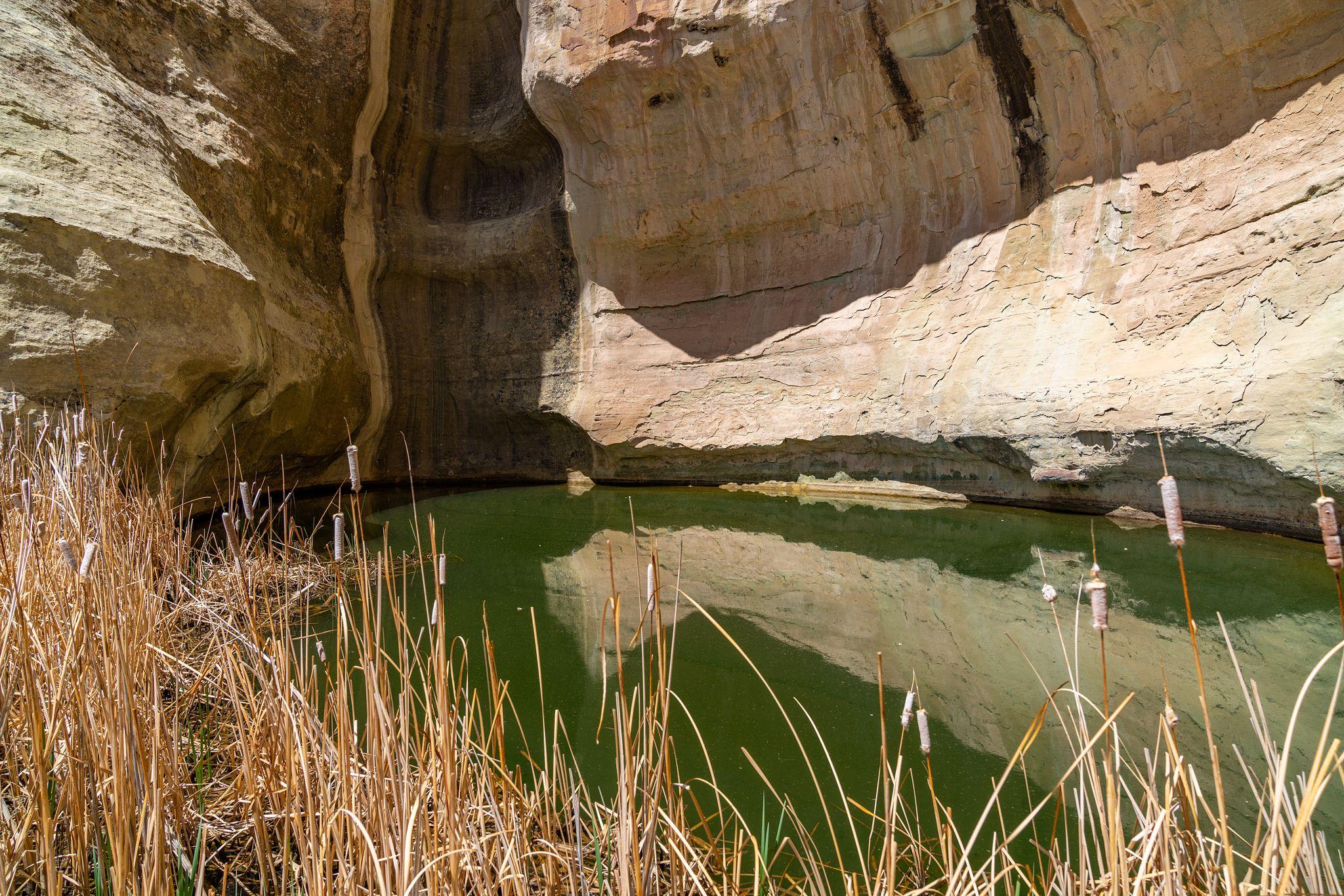 El Morro Pool