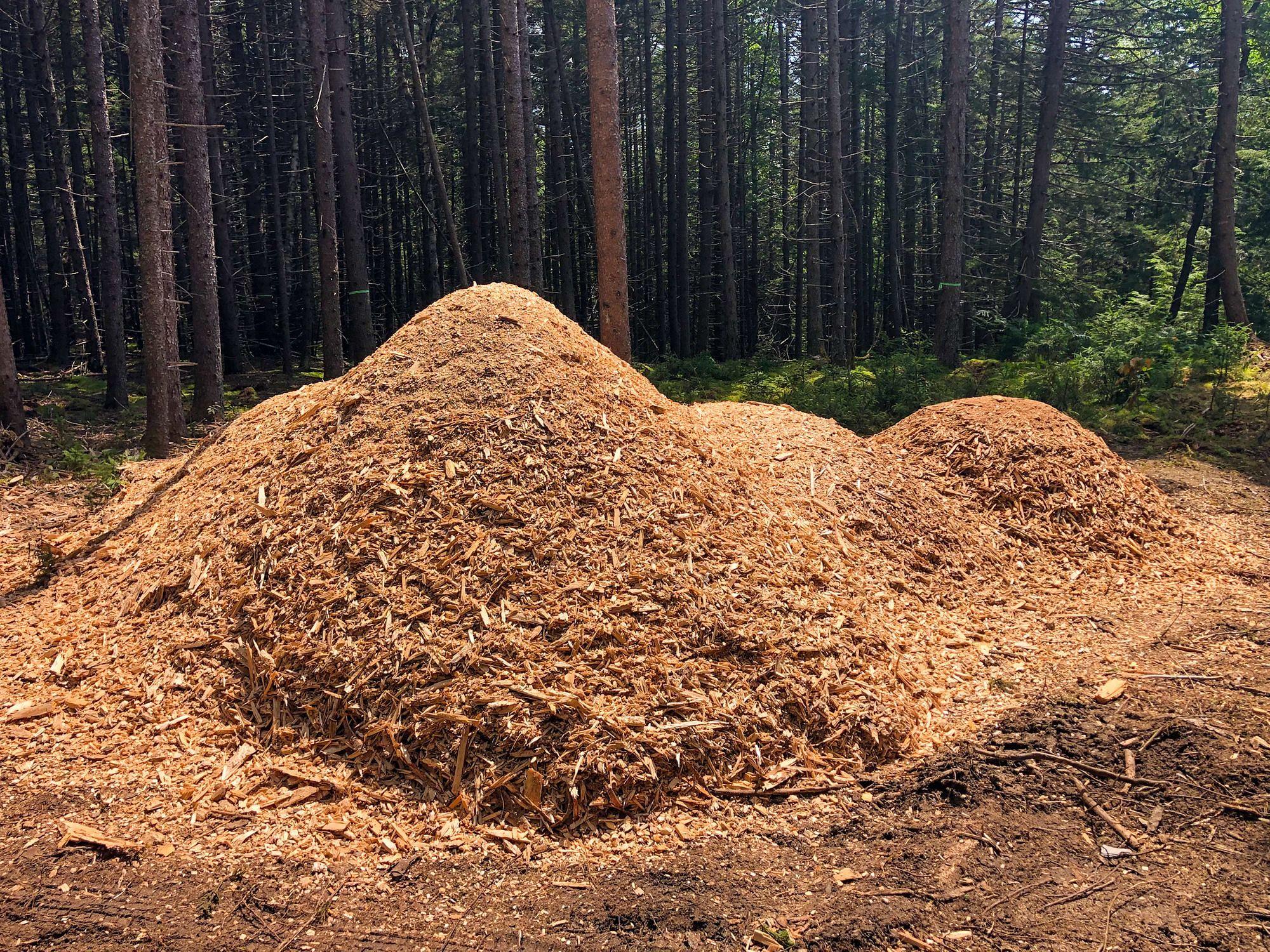 Wood Chip Piles