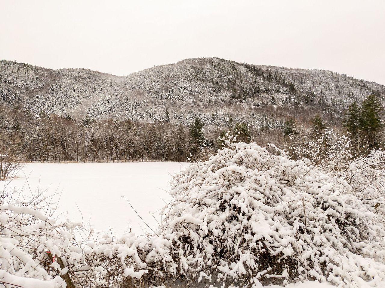 Winter RVing - January Update