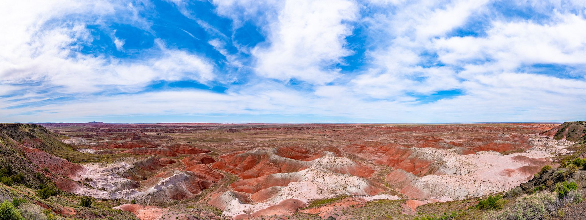 Petrified Forest National Park Panorama