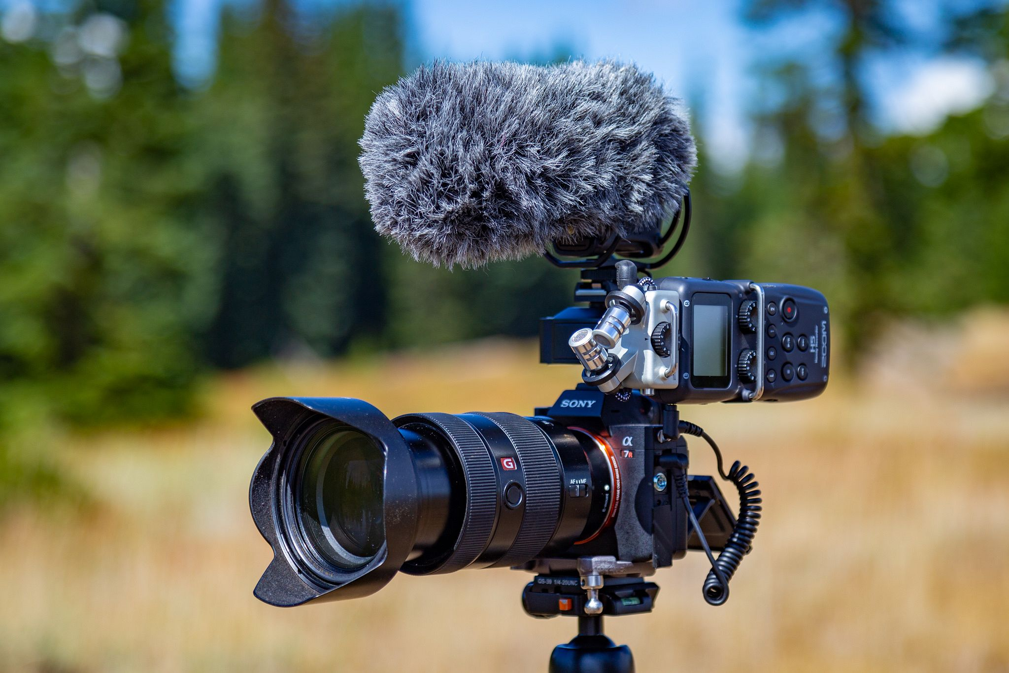 Sony a7R III with Zoom H5 and Rode Stereo Mic Pro