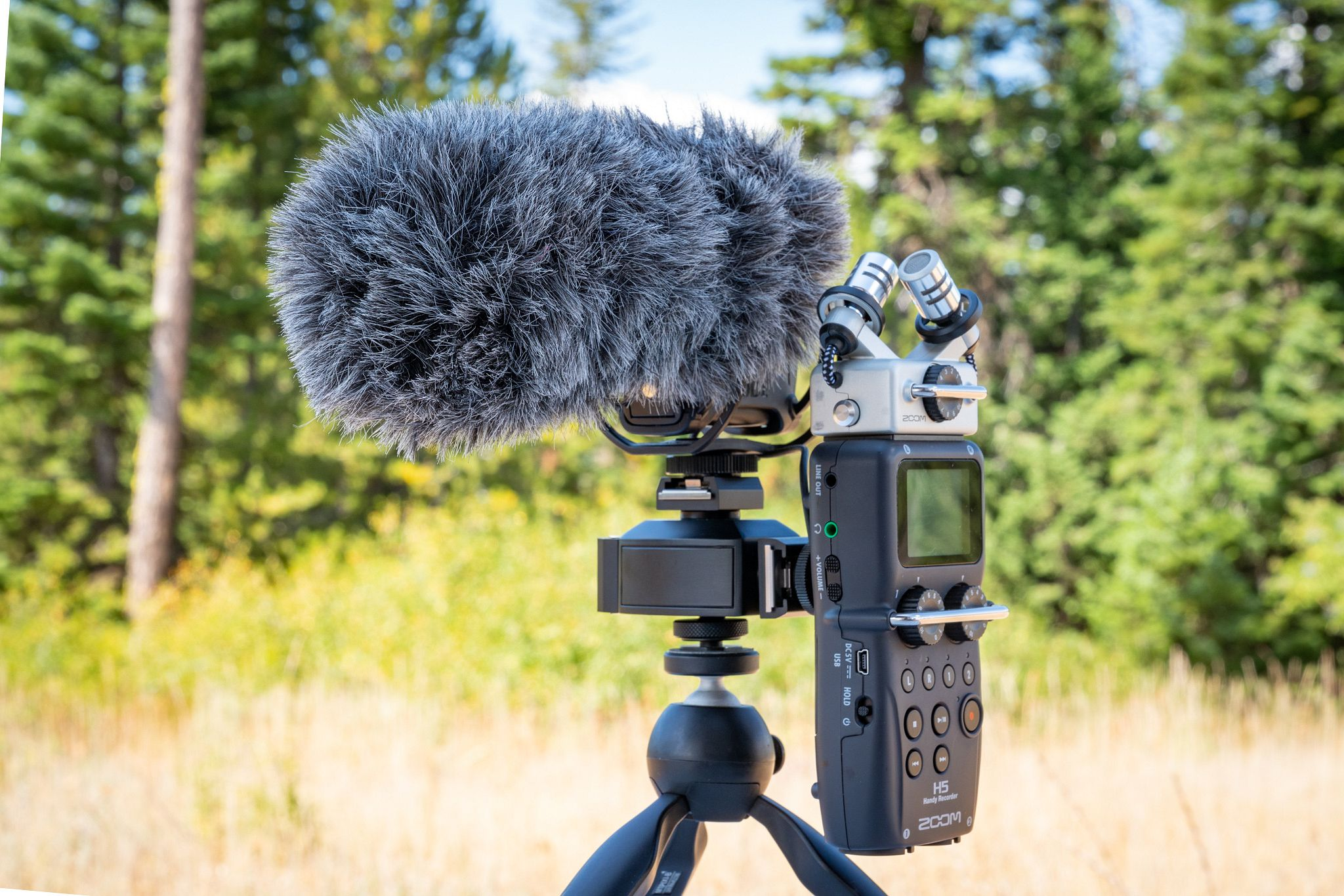 Zoom H5 and Rode Video Mic Pro