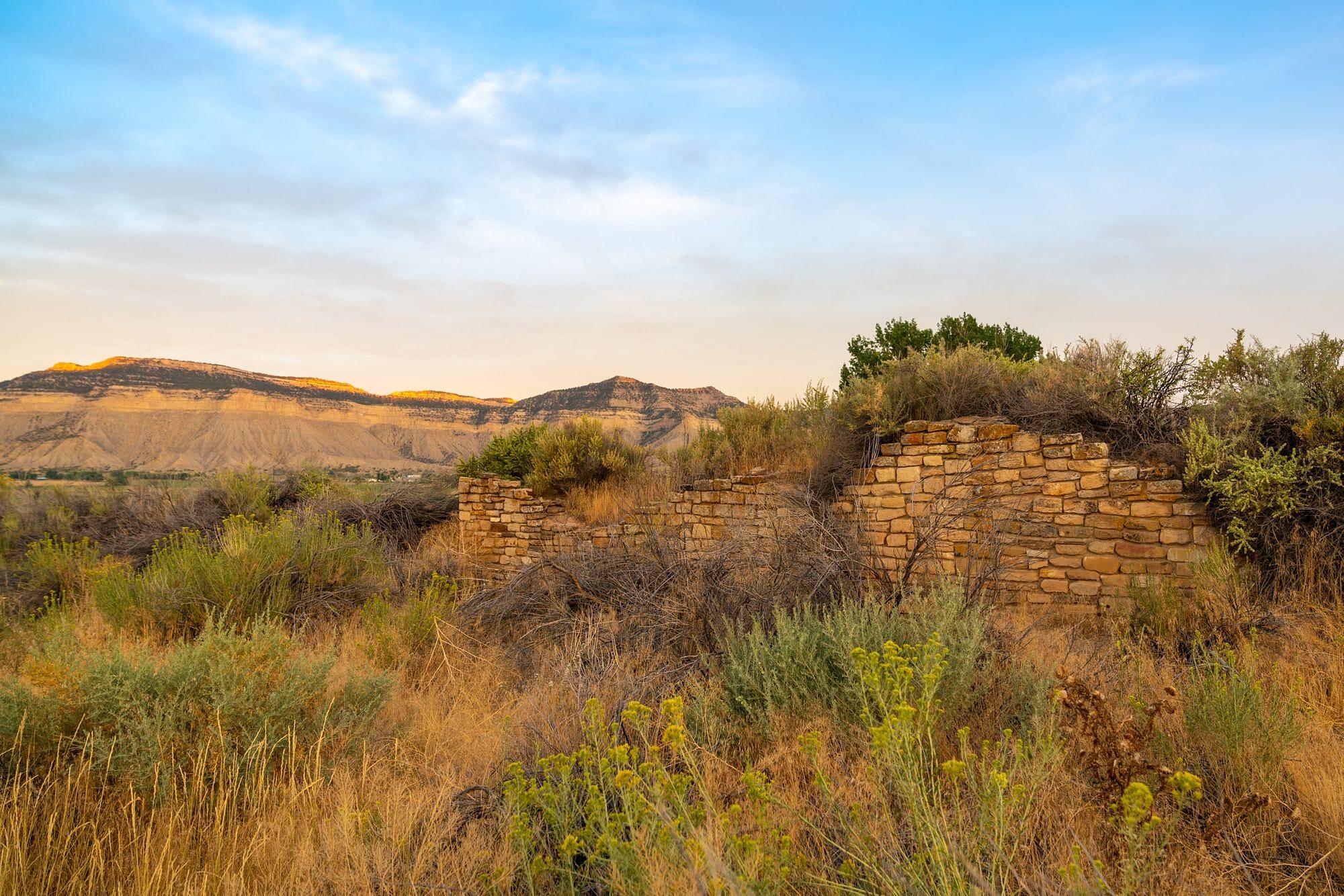 Yucca House Wall