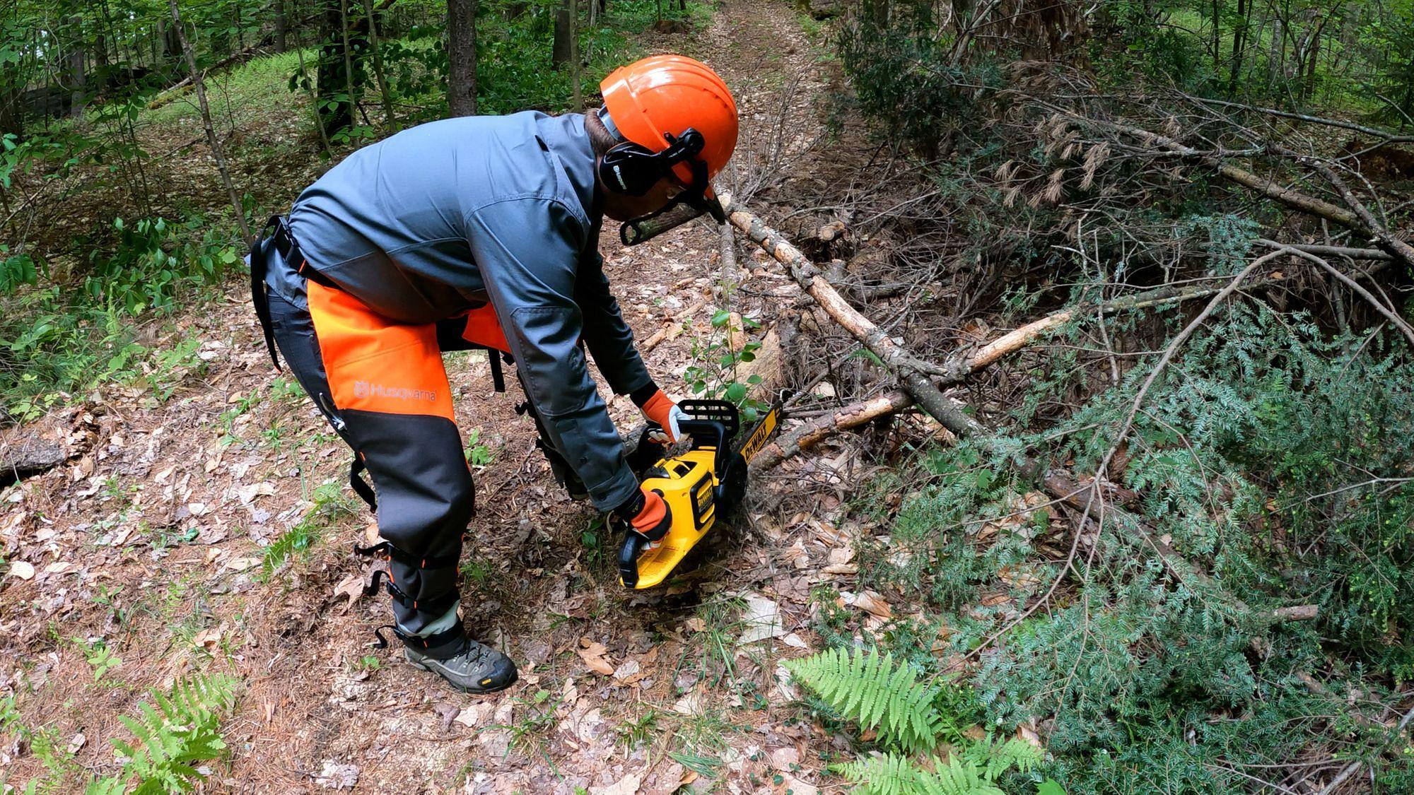 Dewalt DCCS670 Chainsaw