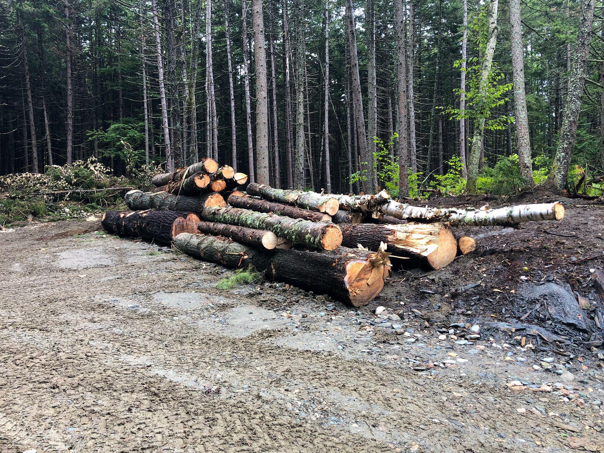 Logs for Milling