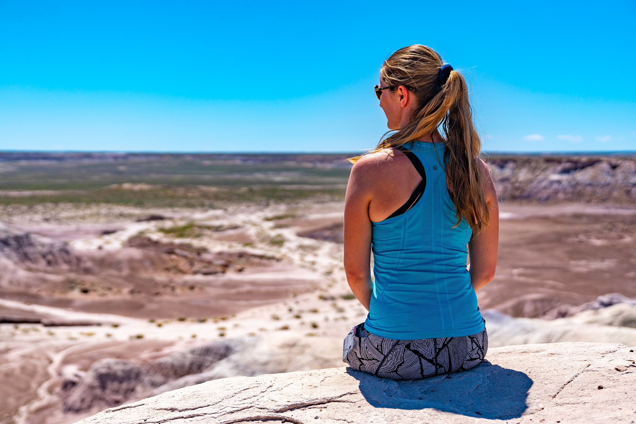 Petrified Forest View