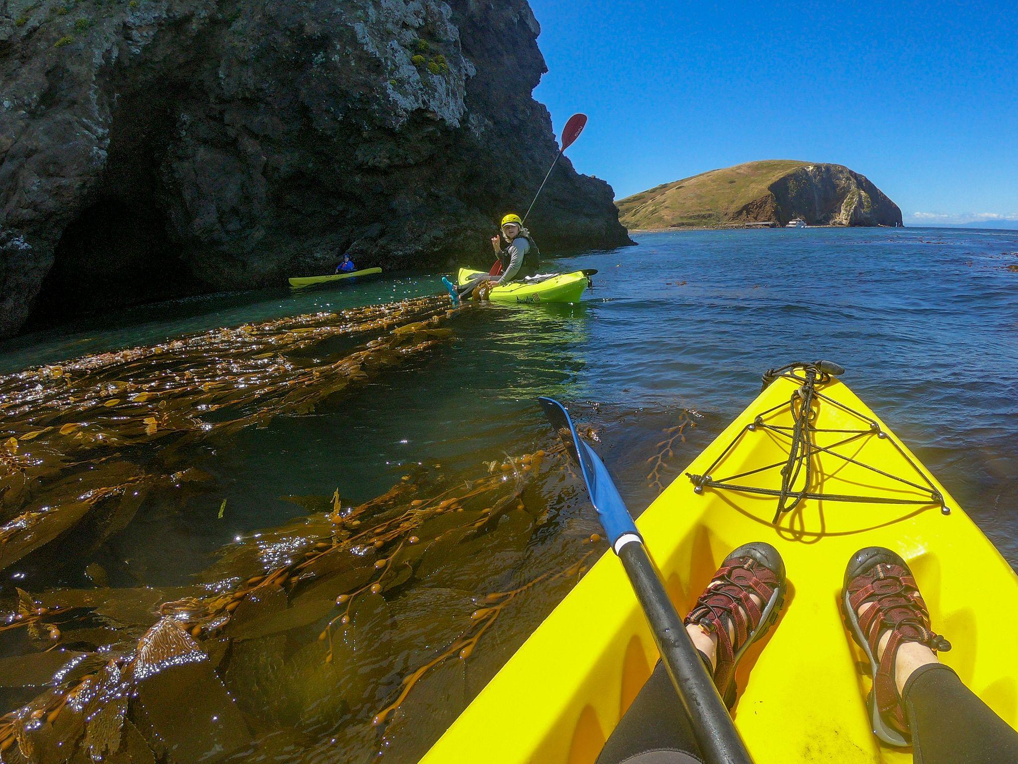 Santa Cruz Kayaking