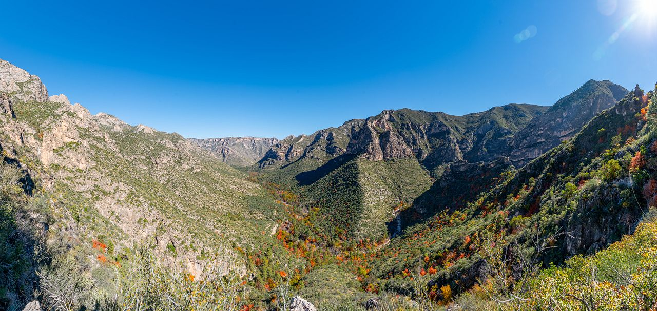 Guadalupe Mountains National Park: Stunning Hiking in Texas
