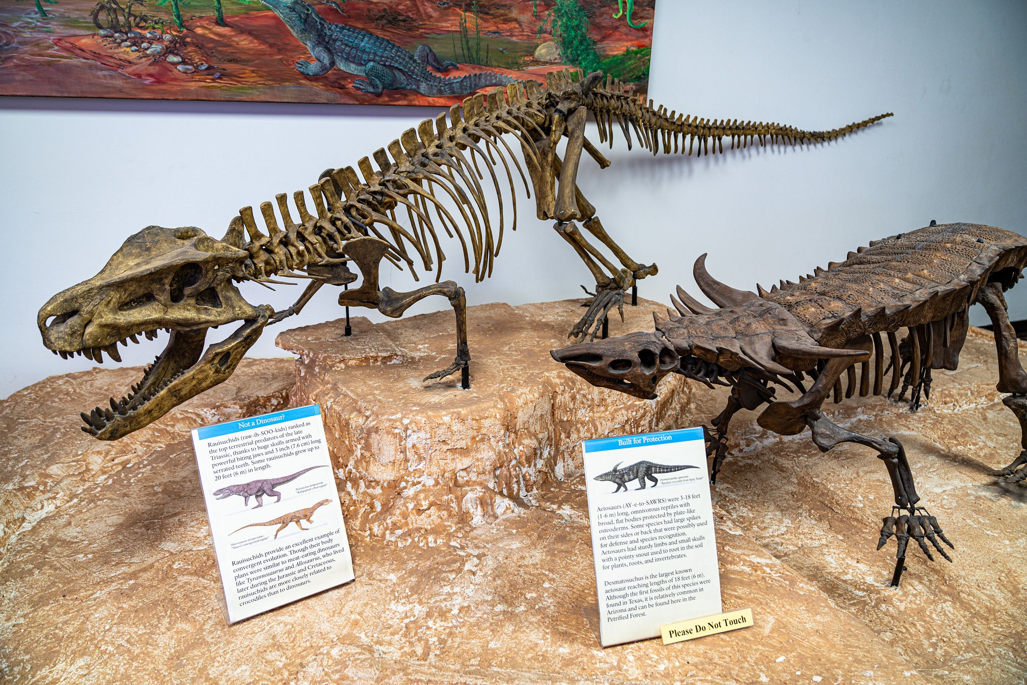 Petrified Forest Dinosaurs